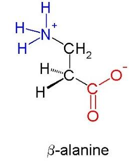 Beta-alanine+molecule