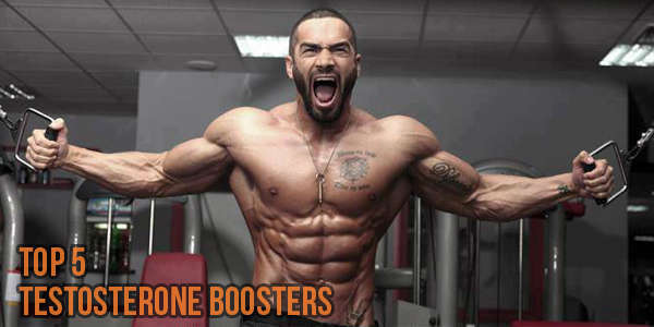 Testosterone Booster Reviews: comparison of 5 highly rated testosterone products