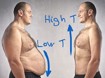 Does Testosterone Make You Lose Weight?