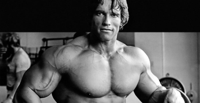 Image result for arnold rest day